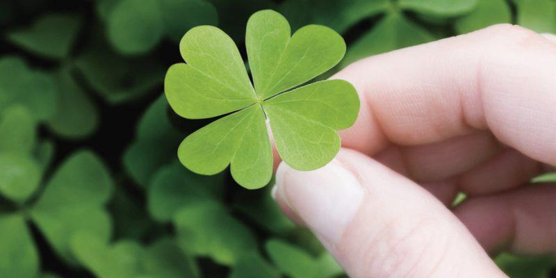 four clover leaf charm
